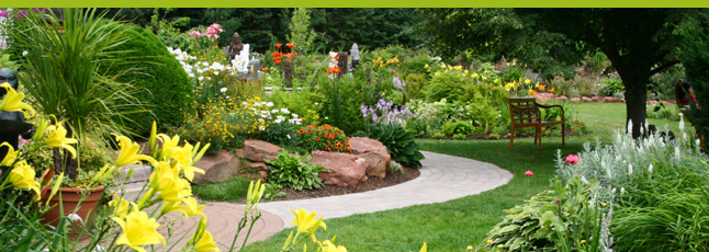 E-paysages : conseils pour l\'aménagement de jardin