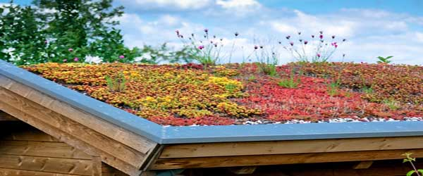 Toiture v g tale la tendance verte e paysages for Tarif paysagiste conseil